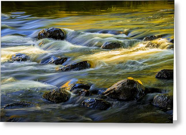 Beautiful Water Reflections On The Flowing Thornapple River Greeting Card by Randall Nyhof