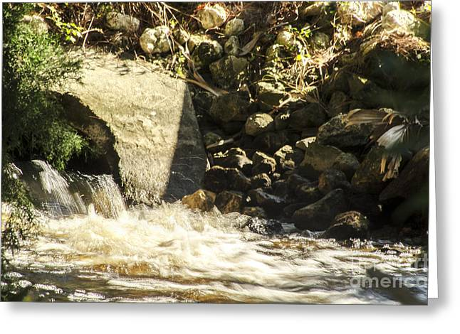 Water Rocks Greeting Card