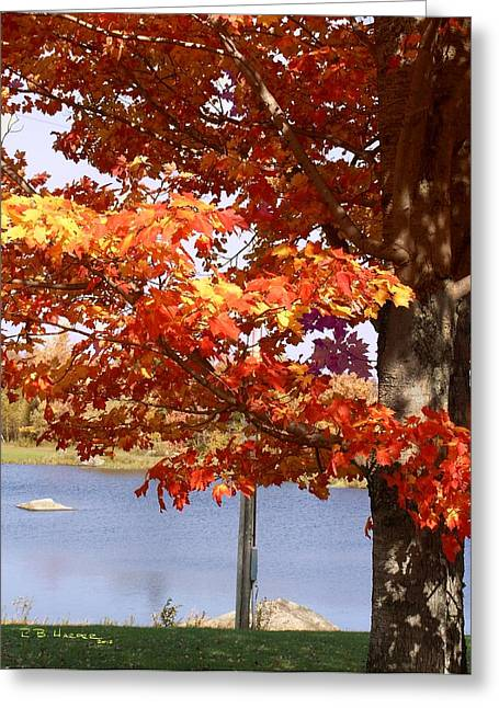 Water Skiing In Jay Vermont Greeting Card