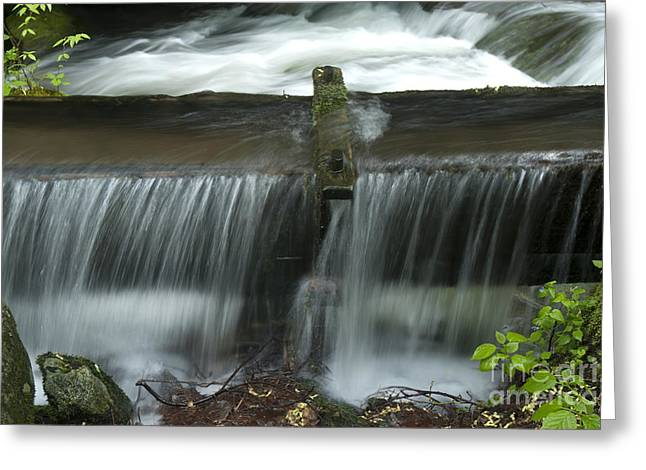 Water Trough Overflow Greeting Card by Paul W Faust -  Impressions of Light