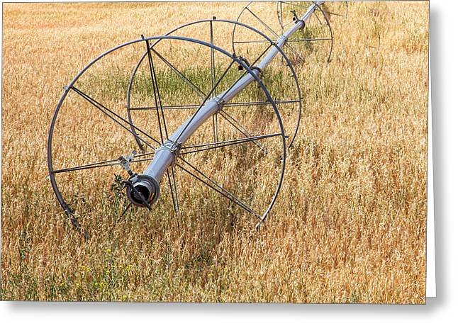 Water Wheel Greeting Card by Peter Tellone