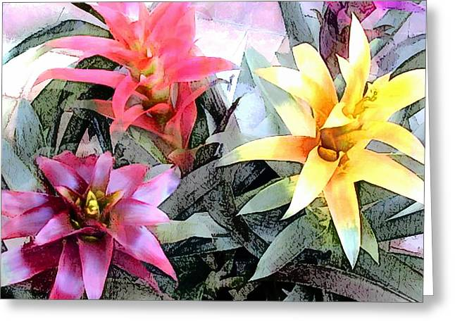 Watercolor And Ink Sketch Of Colorful Bromeliads Greeting Card