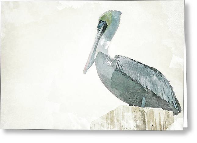 Watercolor Pelican Greeting Card