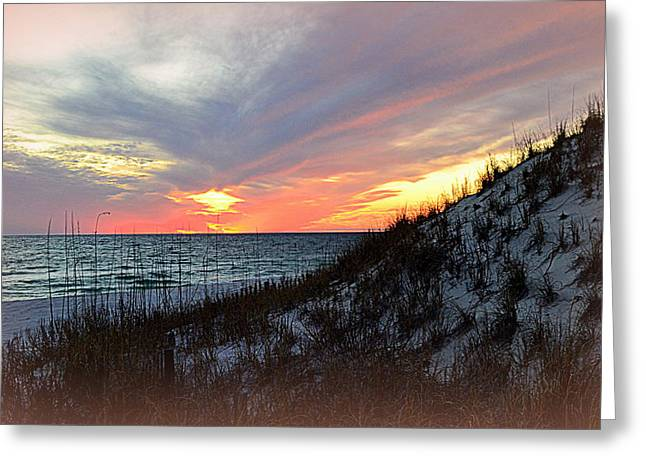 Watercolor Sunset Greeting Card by Toni Abdnour