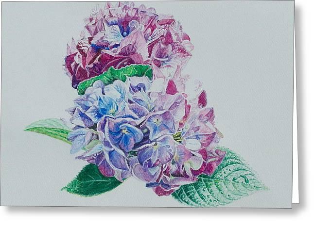 Watercolored Hydrangea Greeting Card
