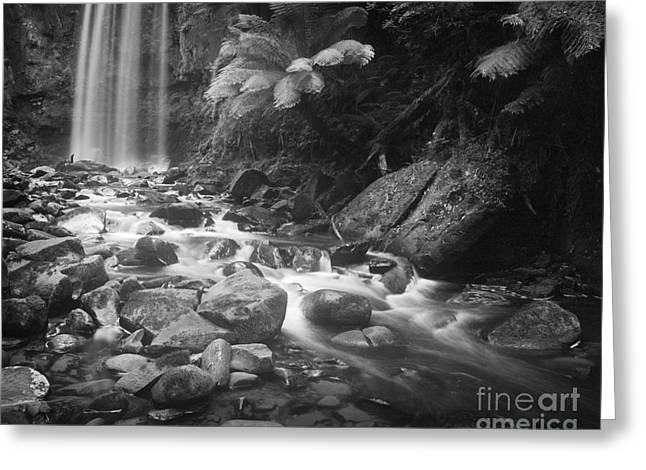 Waterfall 10 Greeting Card by Colin and Linda McKie