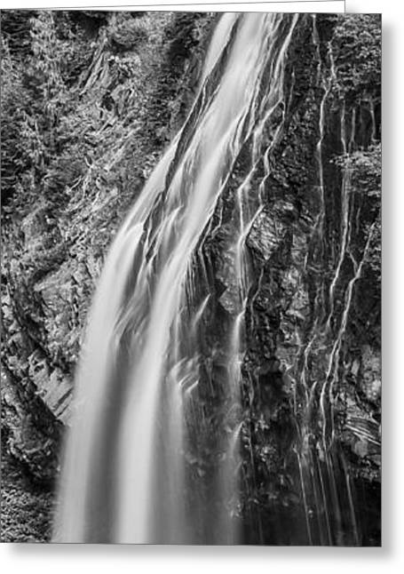 Waterfall 3 Bw Greeting Card