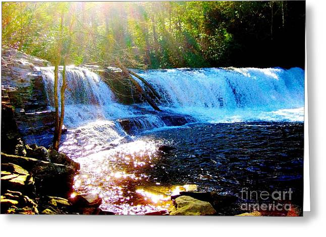 Waterfall At Dupont Forest Park Nc 2 Greeting Card by Annie Zeno