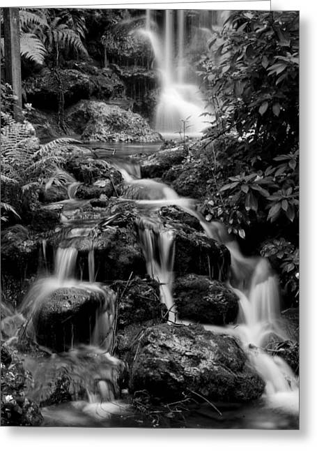 Waterfall At Rainbow Springs Greeting Card by Beverly Stapleton