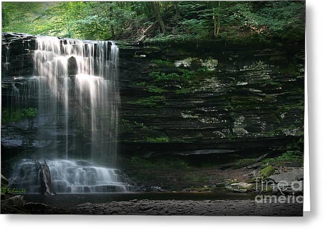 Waterfall At Ricketts Glen Greeting Card