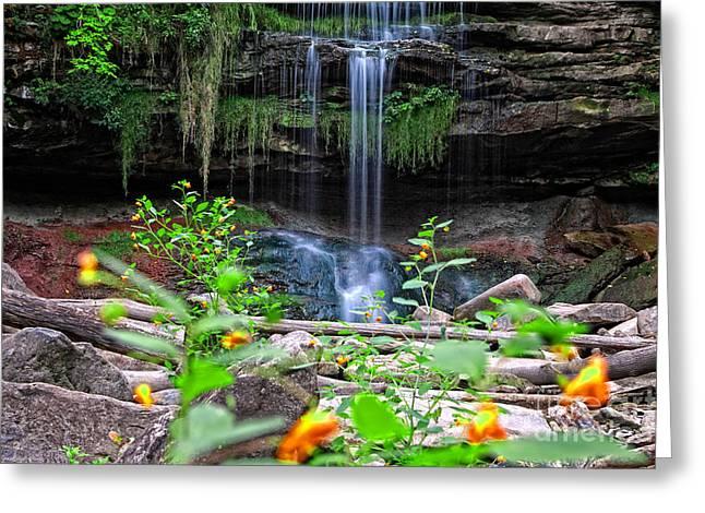 Waterfall Behind Jewelweed Greeting Card by Charline Xia