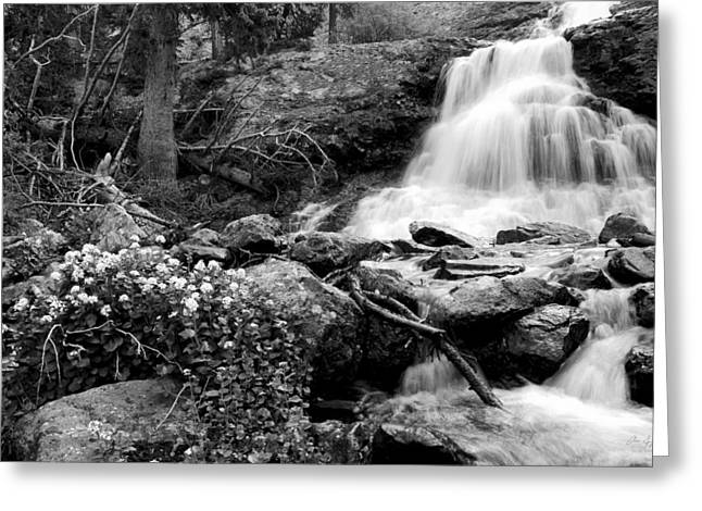 Waterfall Black And White Greeting Card by Aaron Spong