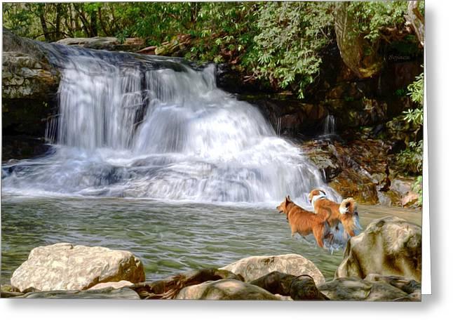 Waterfall Dogs Greeting Card