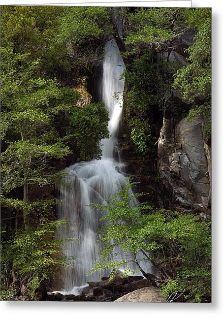 Greeting Card featuring the photograph Waterfall by Gary Rose