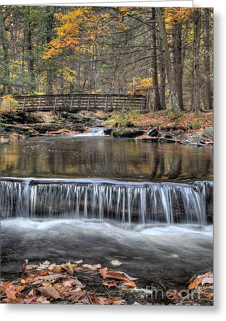 Waterfall - George Childs State Park Greeting Card by Paul Ward