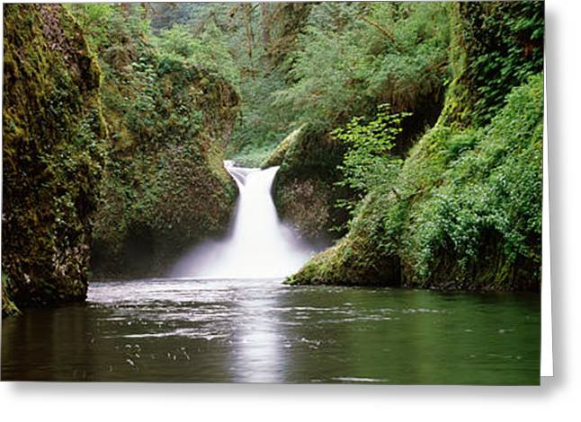 Waterfall In A Forest, Punch Bowl Greeting Card by Panoramic Images