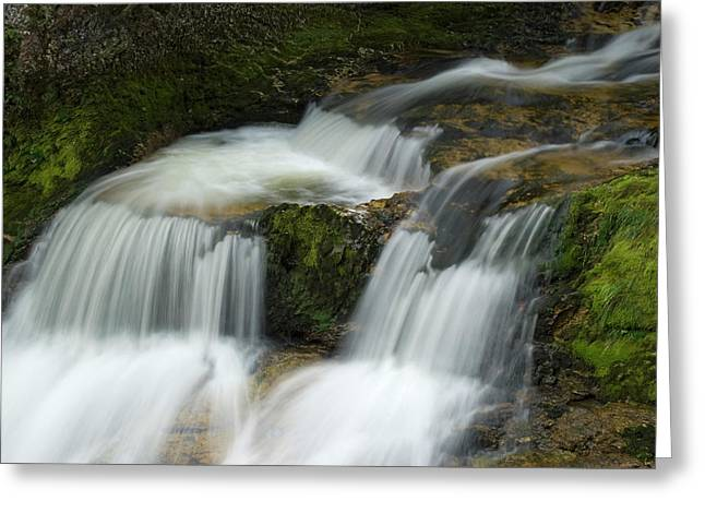 Waterfall In The Clammy Greeting Card