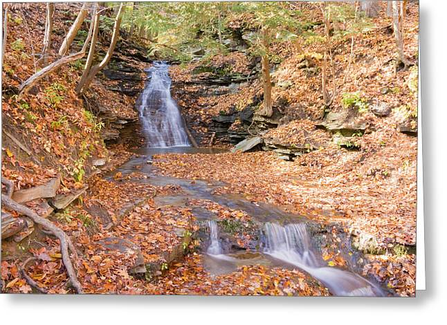 Waterfall In The Fall Greeting Card