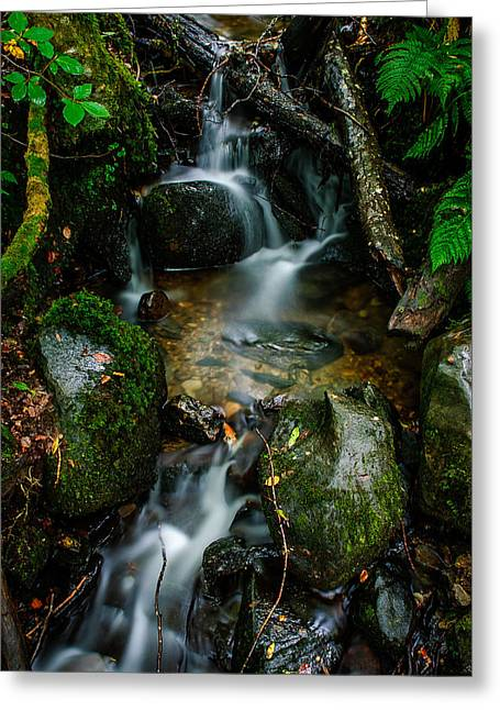 Waterfall In The Woods Greeting Card