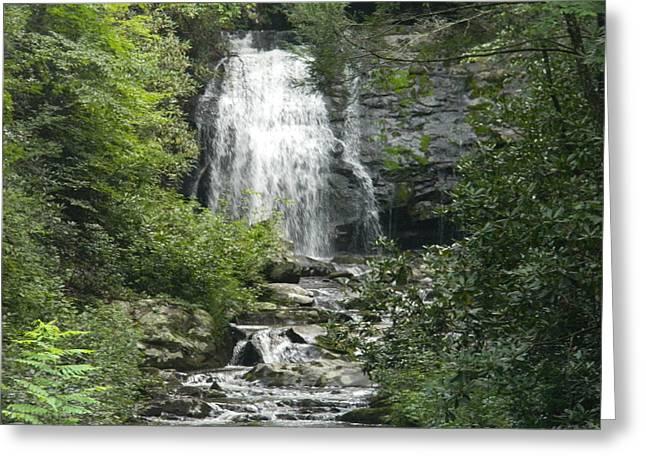 Waterfall Greeting Card by Linda Brown