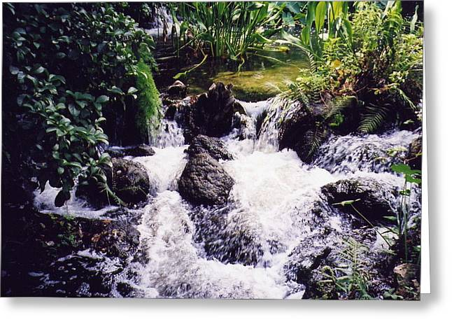 Greeting Card featuring the photograph Waterfall by Michele Kaiser