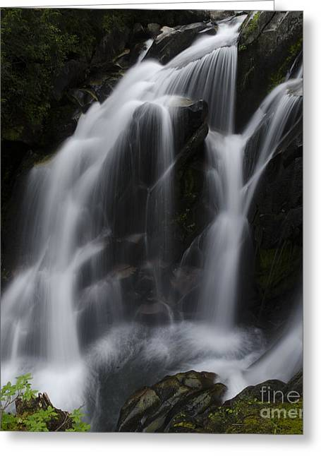 Waterfall On Paradise River Greeting Card by Deby Dixon