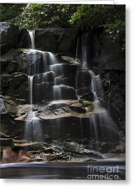 Waterfall On Small Stream Greeting Card by Dan Friend