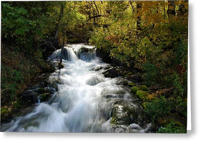 Waterfall On The Little Spearfish Iv Greeting Card