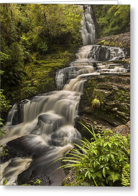 Waterfalls After Rain Mcleans Falls Greeting Card by Colin Monteath