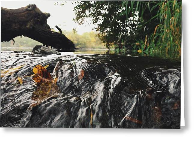 Greeting Card featuring the photograph Waterfalls Beginnning by Nikki McInnes