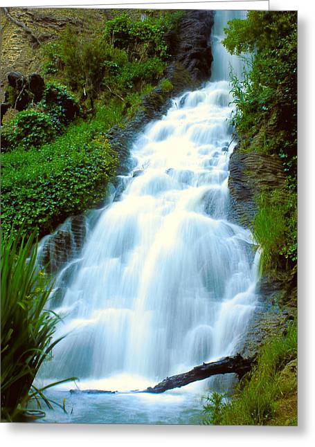 Waterfalls In Golden Gate Park Greeting Card by Bryant Coffey
