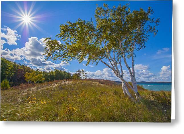 Waterfront Sunshine Greeting Card