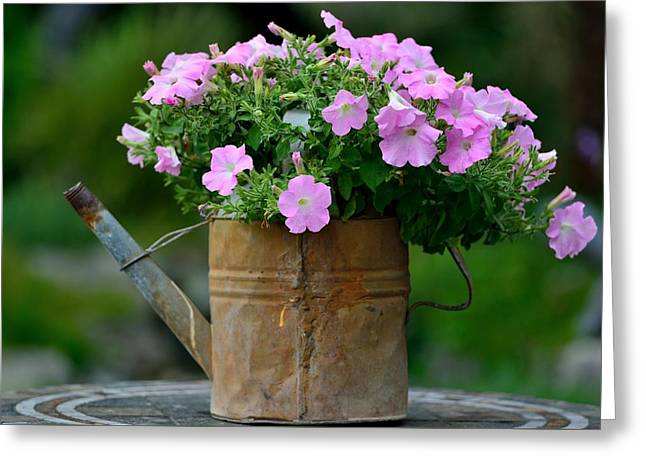 Greeting Card featuring the photograph Watering Can And Flowers by Kathy King