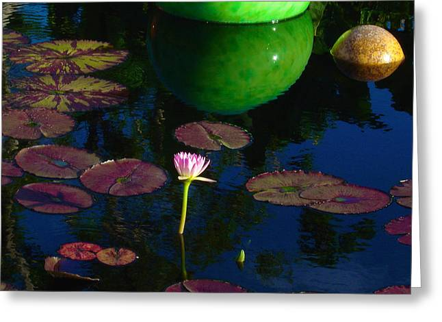 Waterlily Reflection Greeting Card