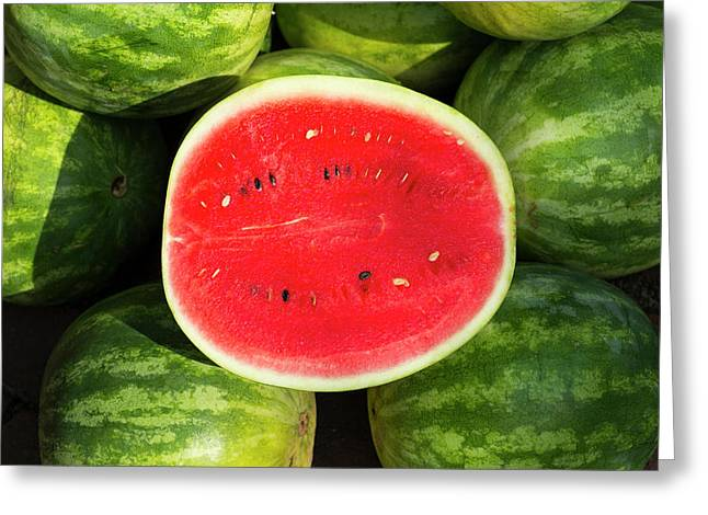 Watermelon For Sale At A Farmer's Greeting Card by Julien Mcroberts