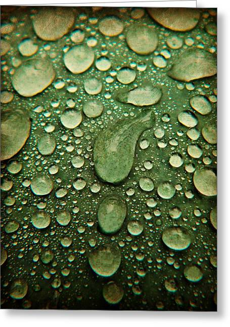 Raindrops On Watermelon Rind Greeting Card
