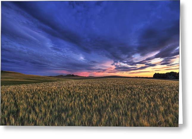Watermelon Sunset Greeting Card by Mark Kiver