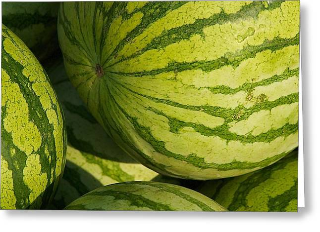 Watermelons Greeting Card