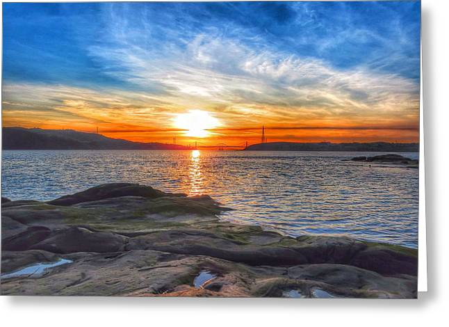Waters Edge Greeting Card by Brian Maloney
