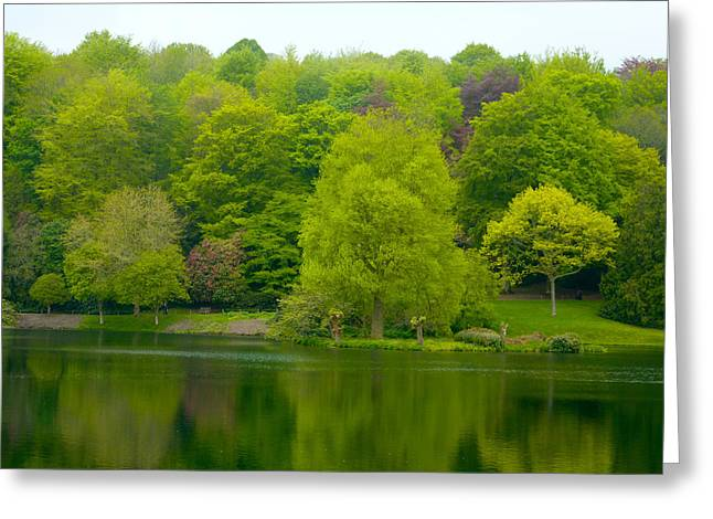 Waters Edge Greeting Card by Rob Sherwood