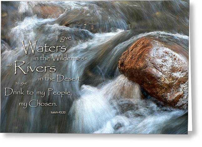 Waters In The Wilderness Greeting Card