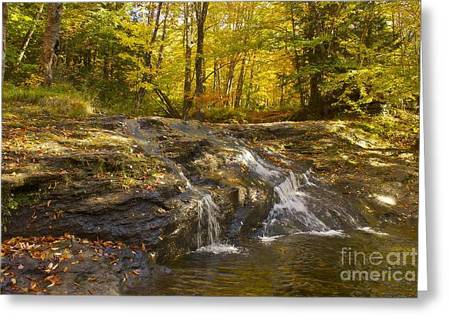 Waterville Waterfall Revisited Greeting Card by Alice Mainville