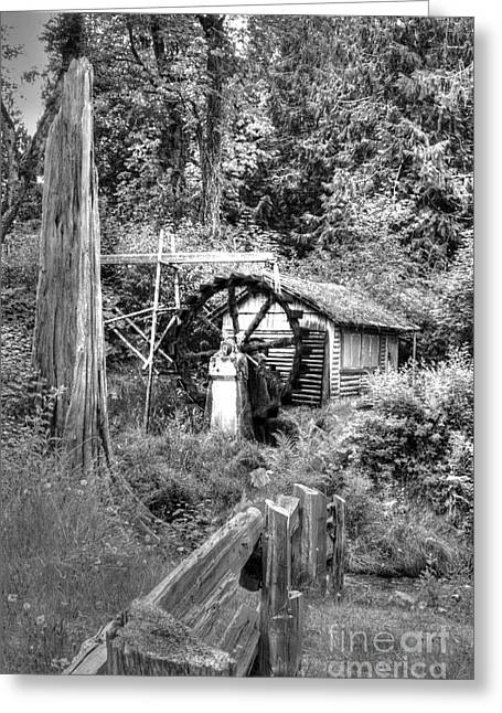Waterwheel In Black And White Greeting Card