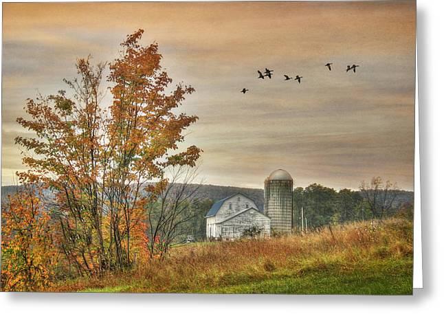 Watkins Glen Farm Greeting Card by Lori Deiter