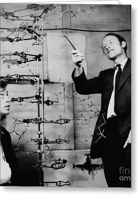 Watson And Crick With Dna Model Greeting Card by A Barrington Brown