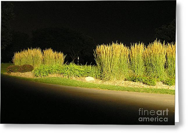 Waukegan Golf Course Greeting Card by James T