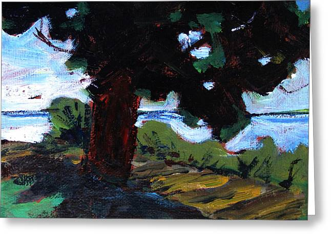 Waukegan State Park Greeting Card by Charlie Spear
