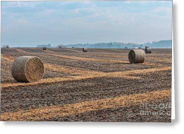 Greeting Card featuring the photograph Waupaca Straw Rolls by Trey Foerster