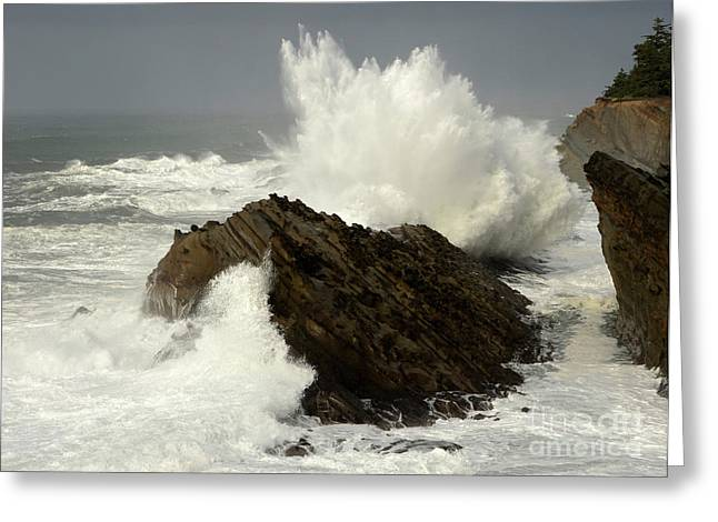 Wave At Shore Acres Greeting Card by Bob Christopher