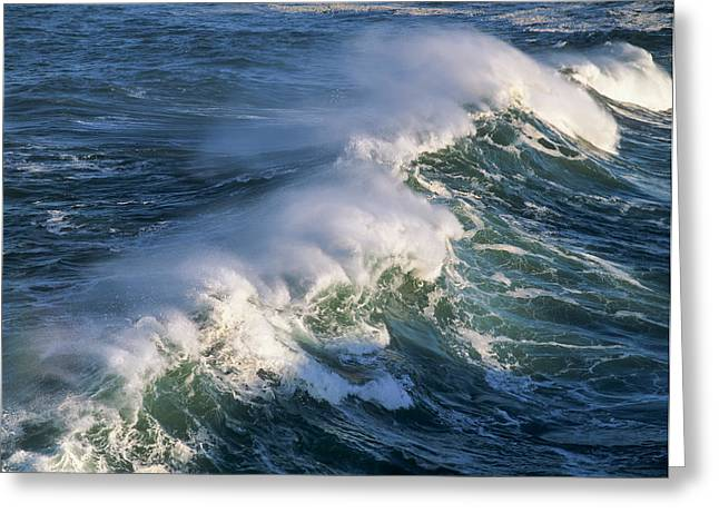 Wave Breaking At Shore Acres State Park Greeting Card by Robert L. Potts